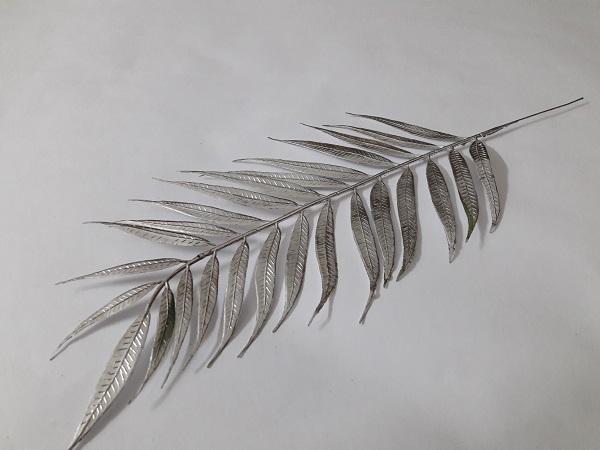 Пальма серебренная королевская. В1840