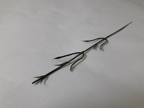Ножка гвоздики Н-36см  Б/С   О4747
